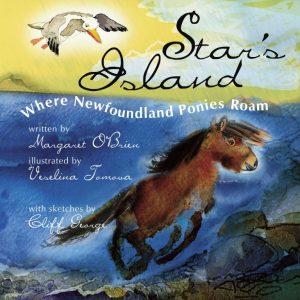 stars island where newfoundland ponies roam